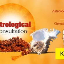 Vedic Consultation And Yagya Services To Make Your Life Balanced
