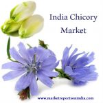 India Chicory Market Research Report 2017