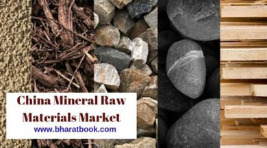 China Mineral Raw Materials Market by Manufacturers, Regions, Type and Forecast 2018-2028