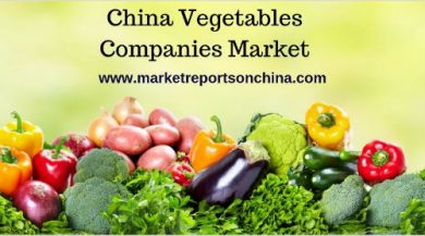 China Vegetables Companies Market Research Report