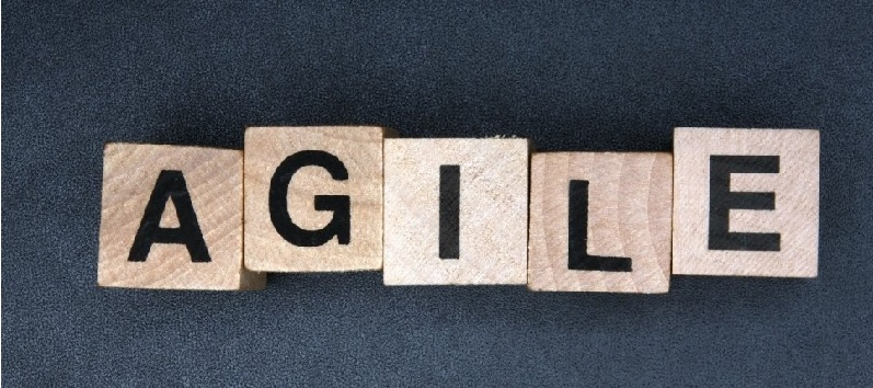 Would You Like Everyone In Your Organization To Become Resilient And Agile?
