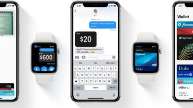 Integration Of ApplePay With Your iOS App: Step By Step Guidance