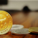 Pi Coin Cryptocurrency Price and Pi Network Detail Information